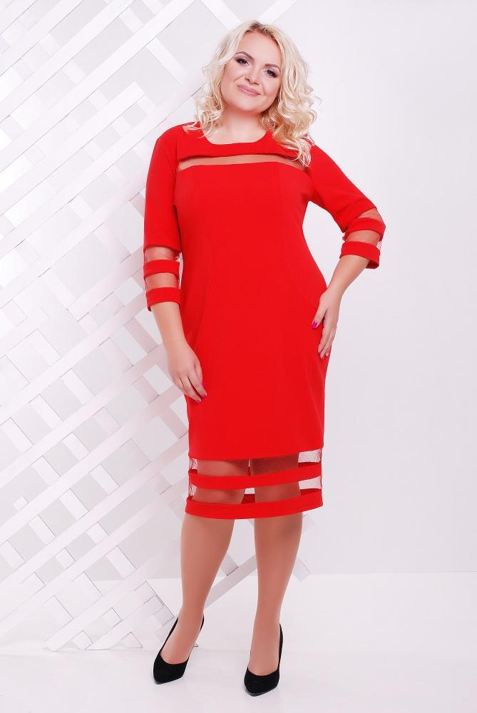 Купить платья больших размеров доставка